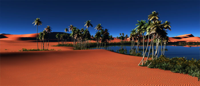 Oase in der ägyptischen Wüste