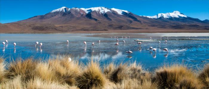 Blaue Lagune in Bolivien