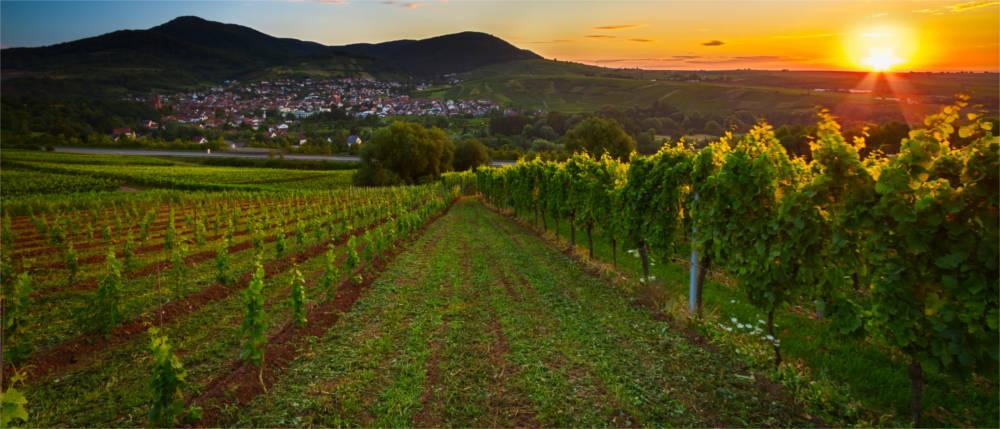 Ausgangsbeschränkung Rheinland Pfalz