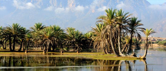 Insel Sokotra in Jemen