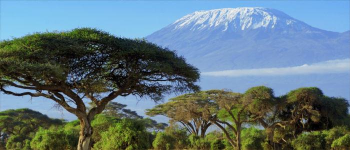offizielle sprachen kenia