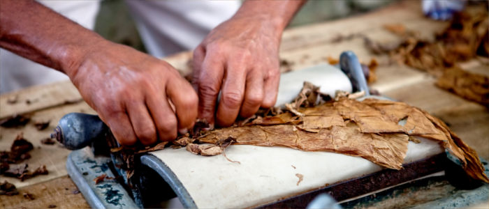 Kuba Tabakanbau und Zigarrenherstellung