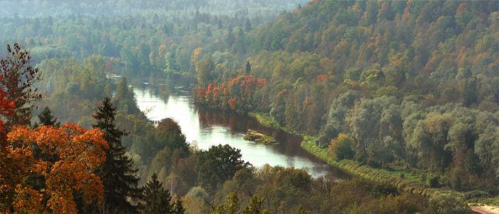 Fluss Gauja in Lettland