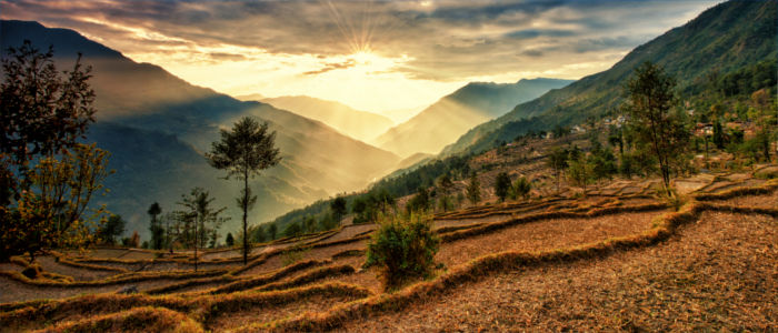Nepal Kalinchok Photeng