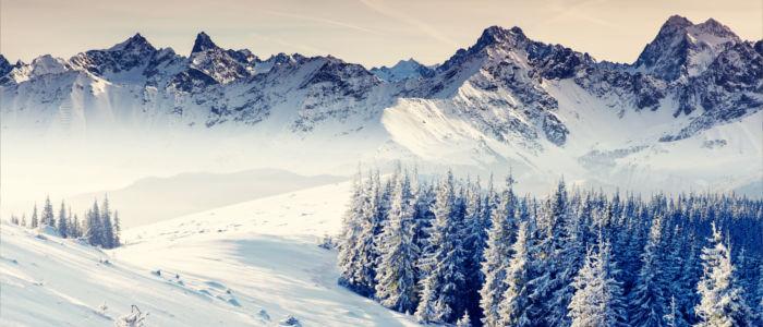 Schneebedeckte Alpen der Schweiz