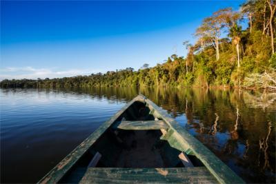 Natürliche Landschaft am Amazonas