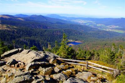 Blick über den Bayerischen Wald