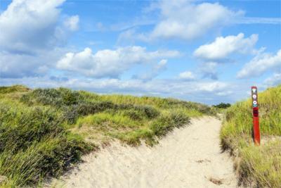 Natur dänische Nordsee