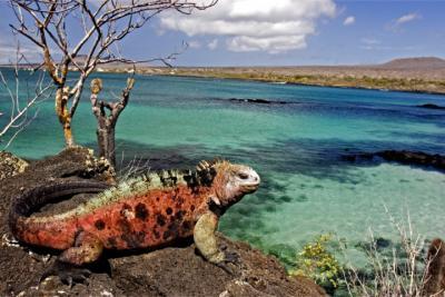 Reiesziel Galapagosinseln