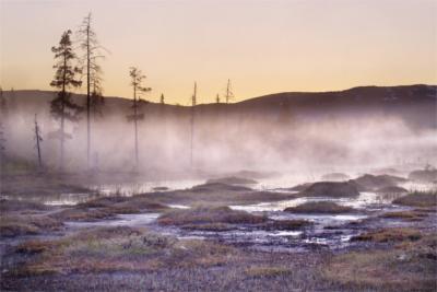 Natur in Nord-Trondelag