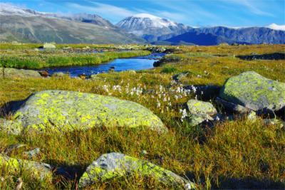 Oppland Landschaft