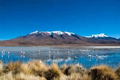 Land Bolivien
