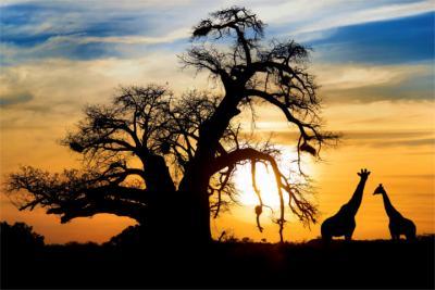Land Botswana