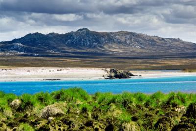 Blick auf die Falklandinseln