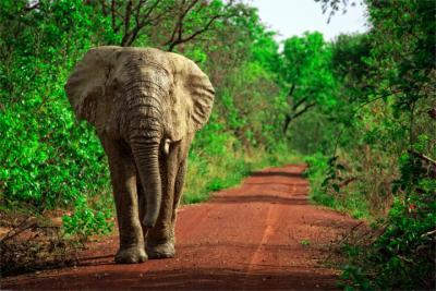 Reiseziel Ghana