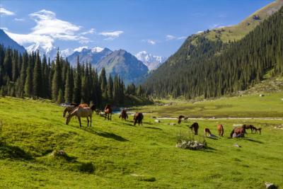 Land Kirgisistan