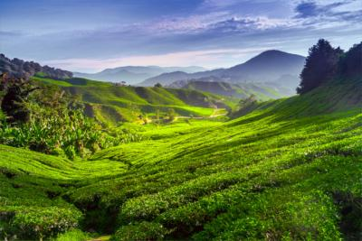 Land Malaysia