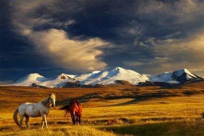 Land Mongolei