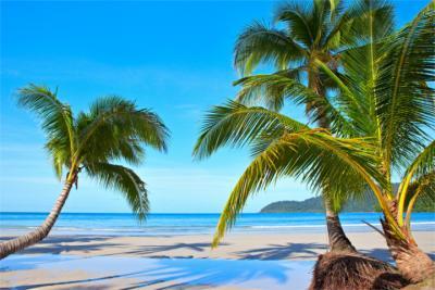 Reiseziel Salomonen