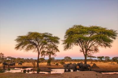 Land Simbabwe
