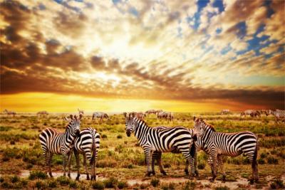 Land Tansania