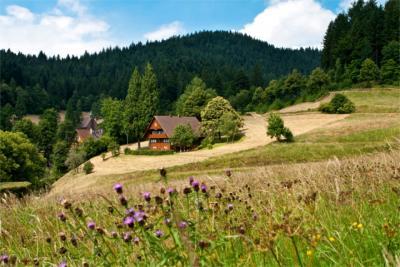 Größtes Mittelgebirge in Deutschland