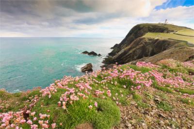Küstenlandschaft Shetland
