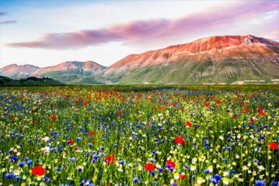 Gras- und Berglandschaft in Umbrien