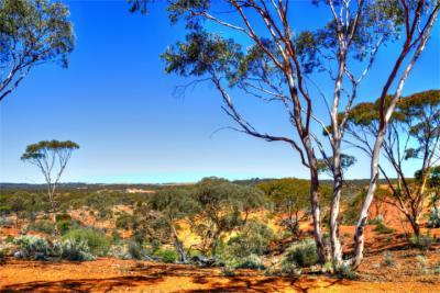 Landschaftsbild in Western Australia