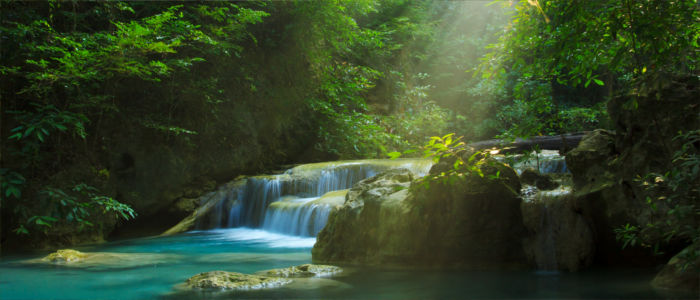 Regenwald im Erawan Nationalpark in Thailand