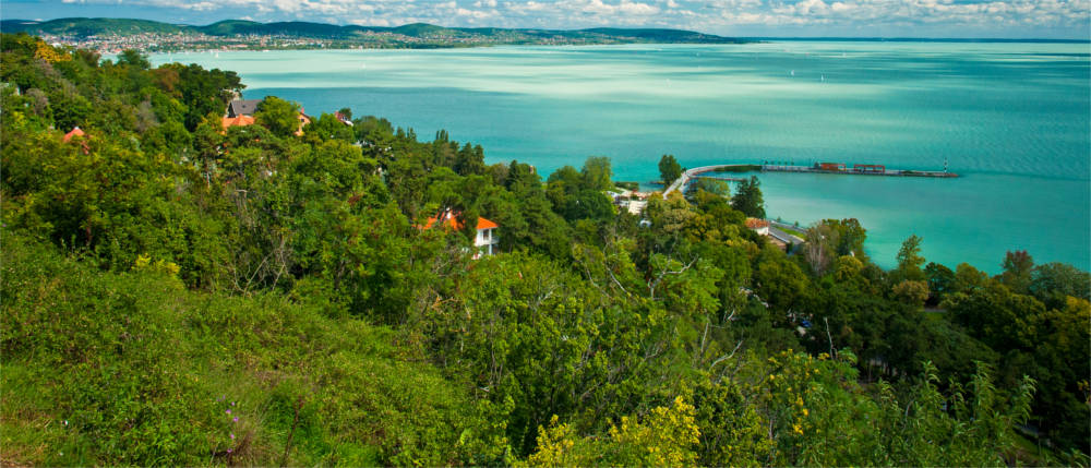 Die Vegetation im Balaton