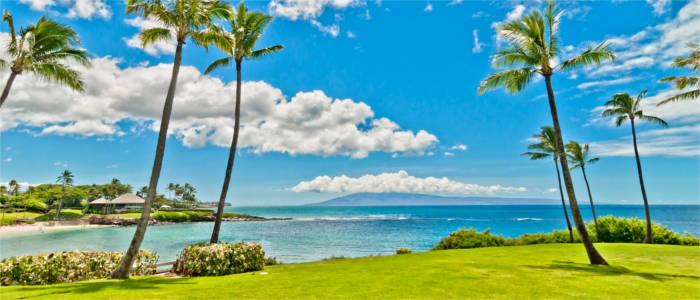 Big Island Hawaii Beaches
