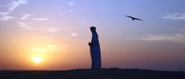vereinigte emirate kultur
